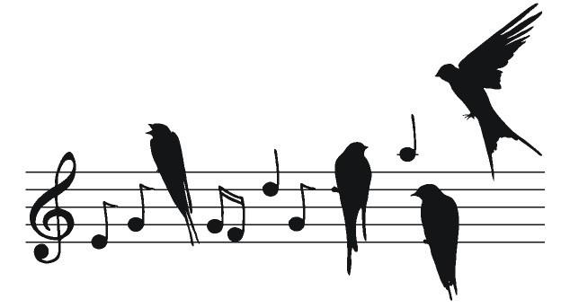 Deze afbeelding heeft een leeg alt-attribuut; de bestandsnaam is notenbalk-met-vogelsA.jpg